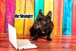 frenchie the stranger