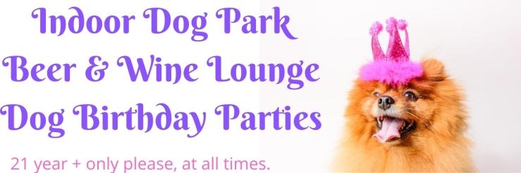 Indoor Dog Park Beer & Wine Lounge Dog Birthday Parties